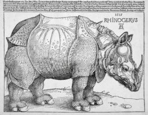 """Xilogravura representando o rinoceronte do rei D. Manuel I chamada """"Rinoceronte de Dürer"""", feita pelo artista alemão Albrecht Dürer."""